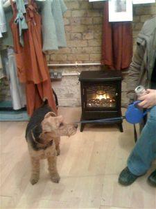 Doley keeps warm