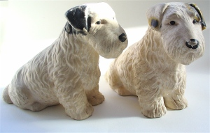 Sealyham Terriers